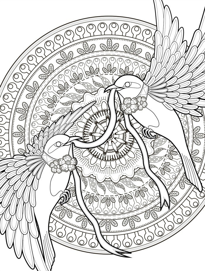 Adult Coloring Pages With Birds Free Downloadable Web The Paper