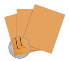 Treasures Butternut Orange Card Stock