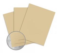 ENVIRONMENT Husk Card Stock