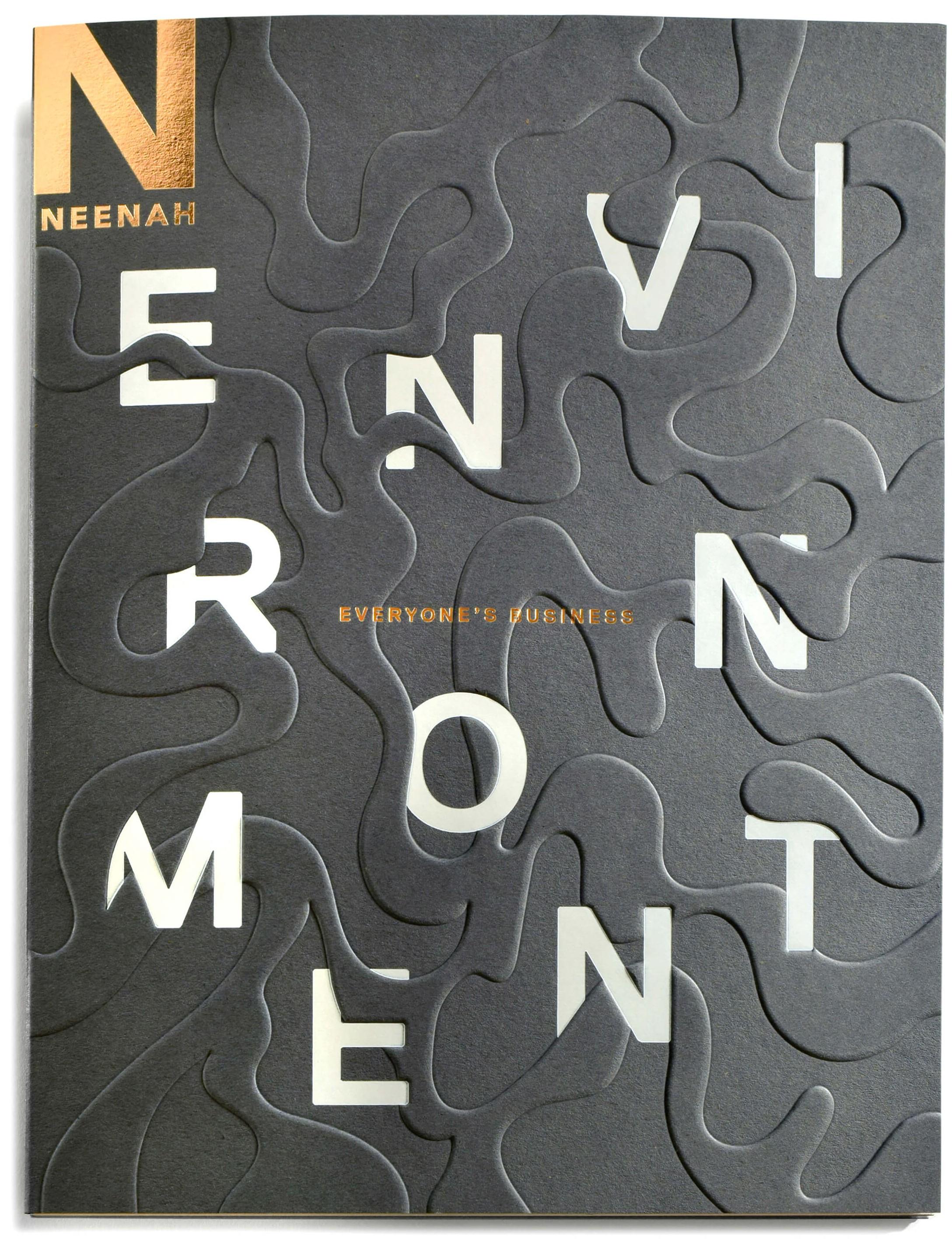 Neenah Environment