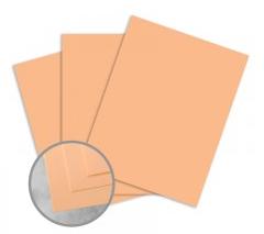 Exact Vellum Bristol Peach Paper