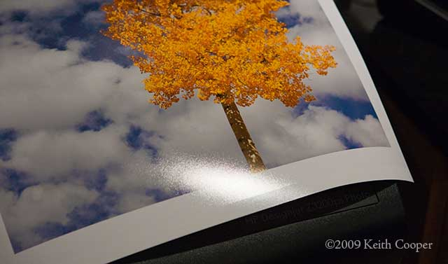 How Amp When To Use Glossy Paper The Paper Blog