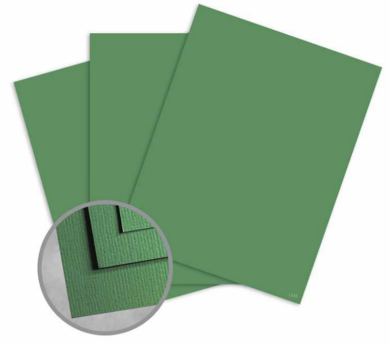 Treasures Grass Card Stock - 8 1/2 x 11 in 80 lb Cover Textured 25 per Package