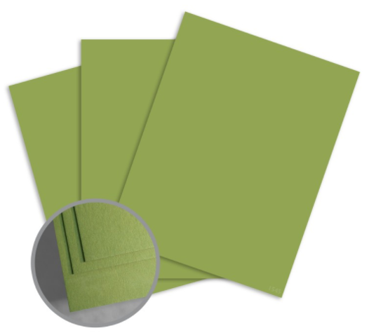 colormates dark spring green card stock