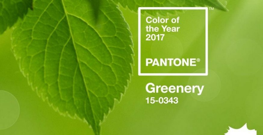 pantone announces 2017 color of the year the paper blog