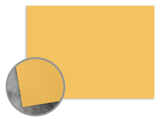 Flavours Gourmet Carmelized Mustard Flat Cards - A7 (5 1/8 x 7) 12 pt Cover Smooth 25 per Box