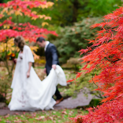 autumn fall wedding guide themes