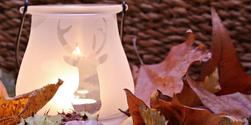 autumn wedding guide woodlands theme animal decoration
