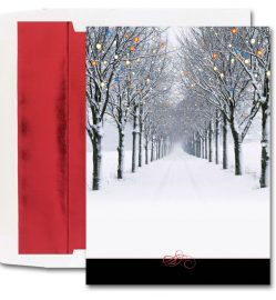 Winter Scene of Road & Trees Cards